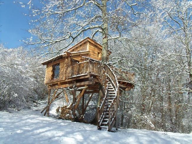 Snow on tree houses