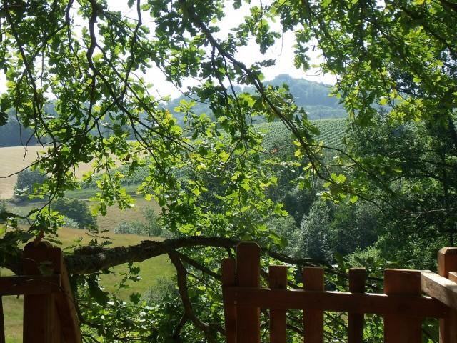 Cabane de charme Aquitaine. Cabane avec vue sur le vignoble de Jurançon. A deux pas de l'Espagne